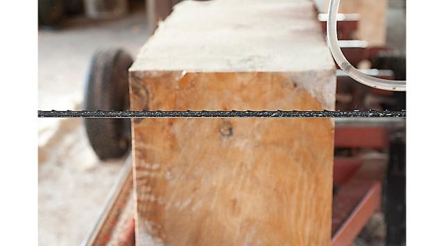 309 - Woodmaster C WEB 2
